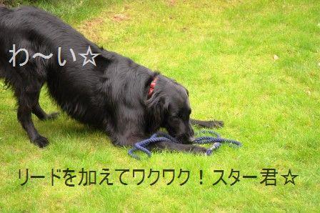 ポテト&リークスープ&自然の中をお散歩しよう☆_d0104926_212424.jpg