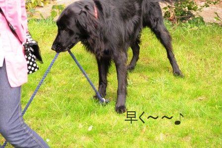 ポテト&リークスープ&自然の中をお散歩しよう☆_d0104926_213994.jpg