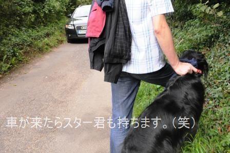 ポテト&リークスープ&自然の中をお散歩しよう☆_d0104926_234691.jpg