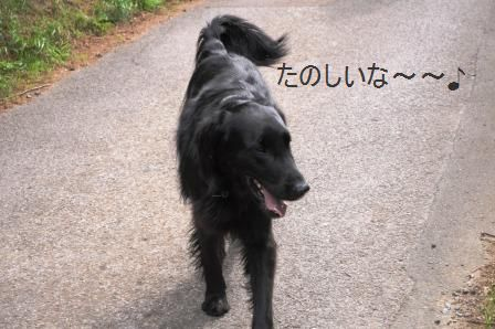 ポテト&リークスープ&自然の中をお散歩しよう☆_d0104926_263550.jpg