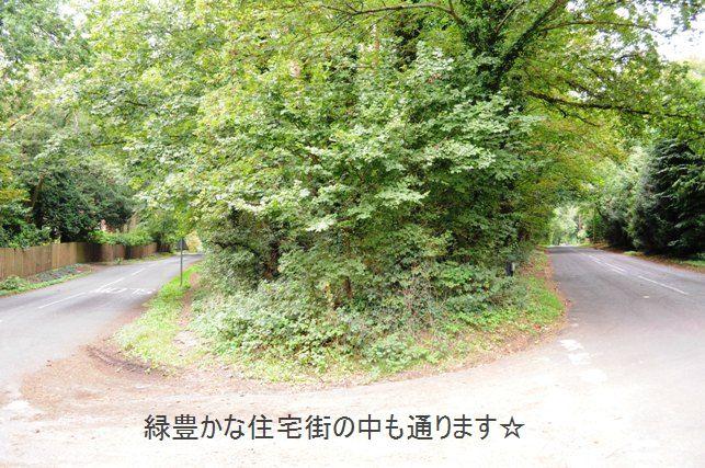 ポテト&リークスープ&自然の中をお散歩しよう☆_d0104926_26472.jpg