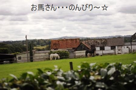 ポテト&リークスープ&自然の中をお散歩しよう☆_d0104926_272218.jpg