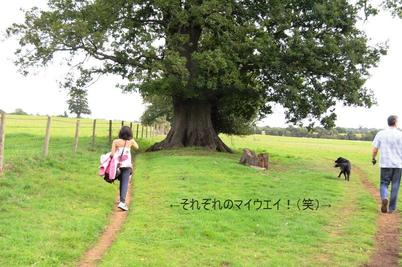 ポテト&リークスープ&自然の中をお散歩しよう☆_d0104926_275441.jpg