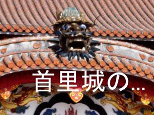f0063645_230185.jpg