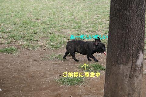 c0214455_0521094.jpg