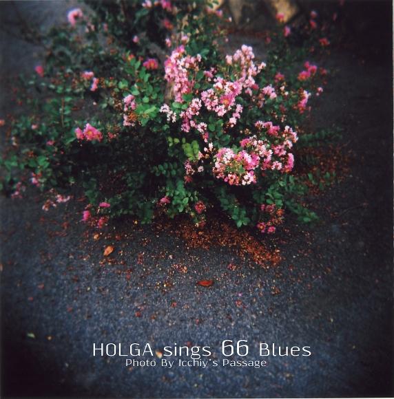 Singin\' 66 Blues _f0115475_18295922.jpg