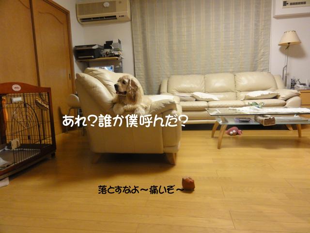 f0218182_1347938.jpg