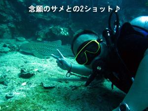 今日こそサメを!!_f0144385_20544833.jpg