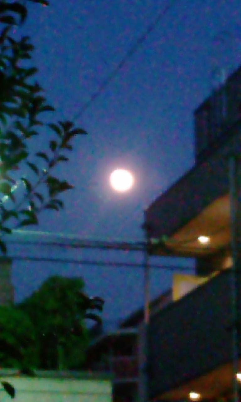 十五夜_e0177713_18131763.jpg