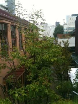 こんな家に住みたいプロトハウス展 _e0029115_17264513.jpg