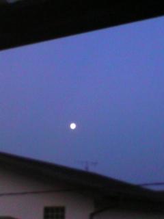 隕石‥_b0157416_22283626.jpg