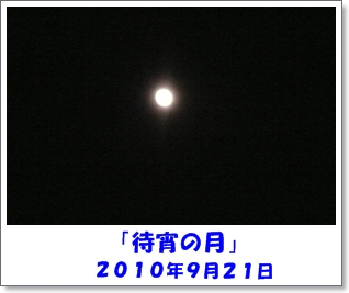 b0167519_85012.jpg