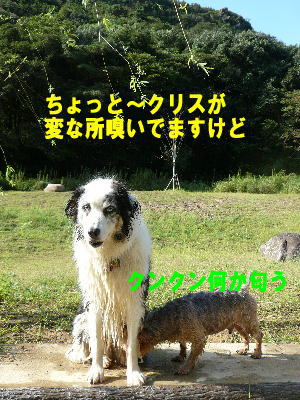 d0013645_14444215.jpg