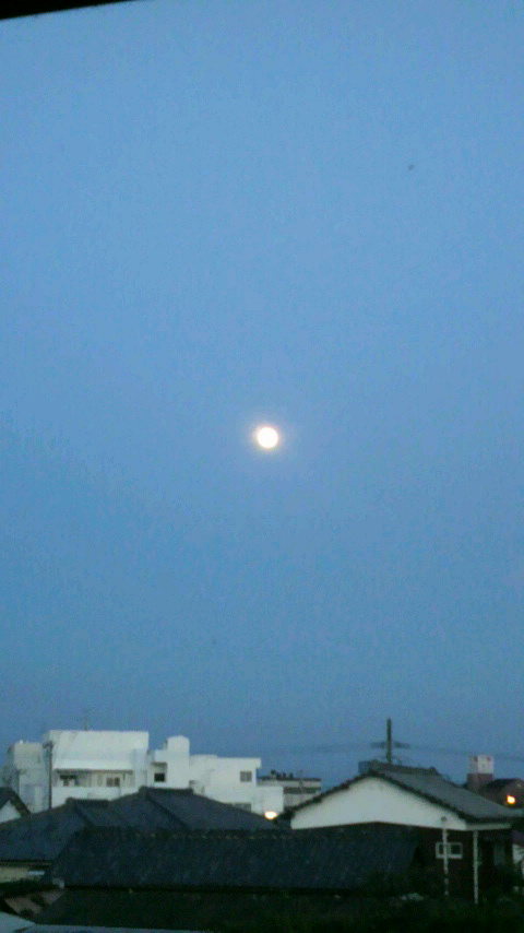 中秋の名月〜_d0051146_2101370.jpg