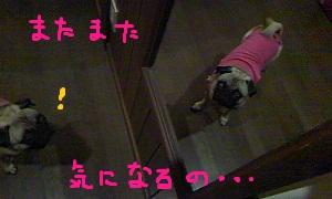b0197865_14404346.jpg