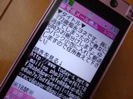 b0140270_8354777.jpg