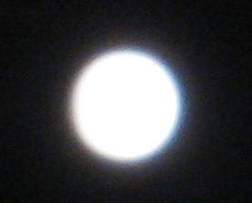 月見団子_e0170272_20515628.jpg