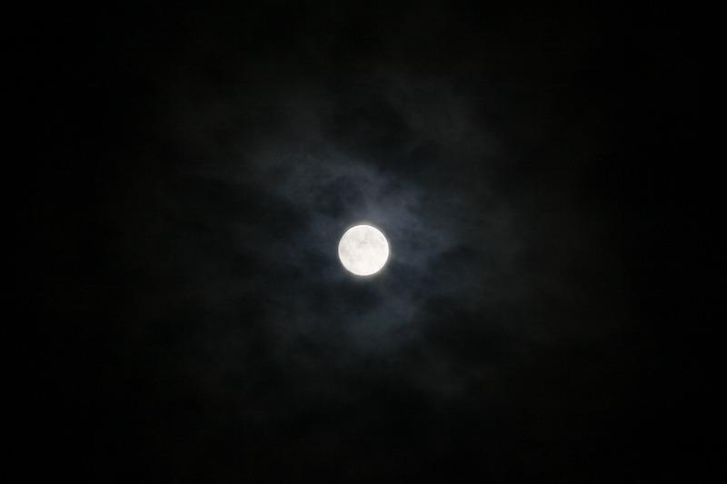 仲秋のおぼろ月_a0160581_21494240.jpg