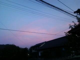 今日のかわうち村_d0027486_525653.jpg