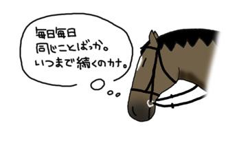 セルフランセ物語 〜5話〜_a0093189_1349085.jpg