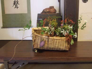野の花9月_e0187897_20514910.jpg