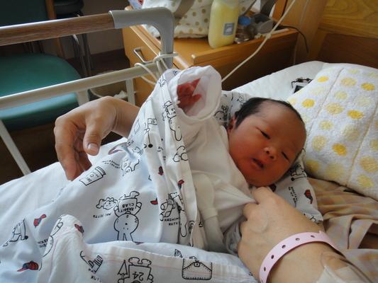 生まれました!_c0132901_1630431.jpg