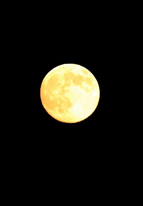 """中秋の名月""_a0140608_6254261.jpg"