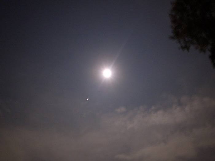 中秋の名月_c0116915_0104765.jpg