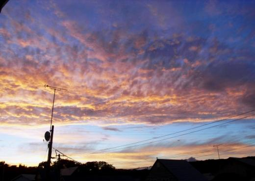2010年9月23日(木):秋分の日はパッとしないまま_e0062415_17263135.jpg