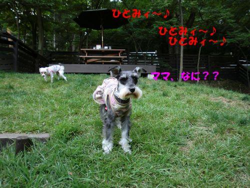 b0206444_1446100.jpg