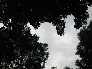 e0201348_19473626.jpg