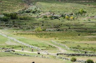 チベット・ラサ 0923_c0047856_18501819.jpg