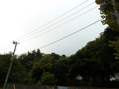 2010.9.23  秋分の日_a0083571_8255266.jpg