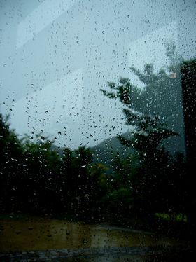 秋モード、雨モード_b0102572_11423493.jpg