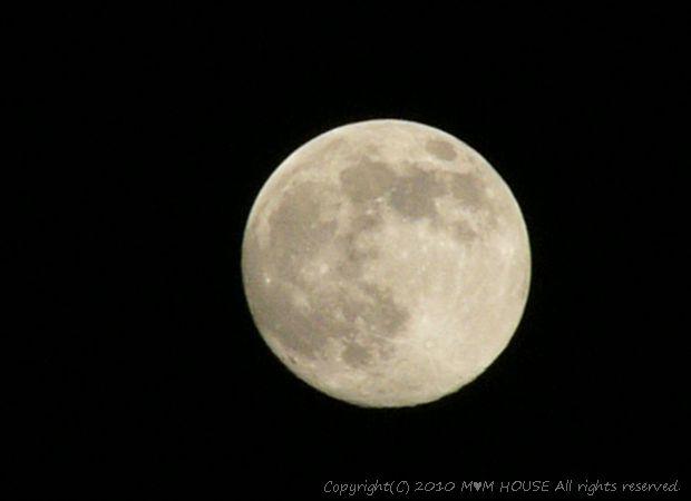 きのこたっぷり ボロネーゼ ☆ まんまるお月様♪_c0139375_13295296.jpg