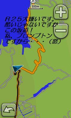 c0153888_13585047.jpg
