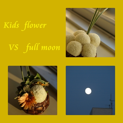 VS  満月_d0144095_1983723.jpg