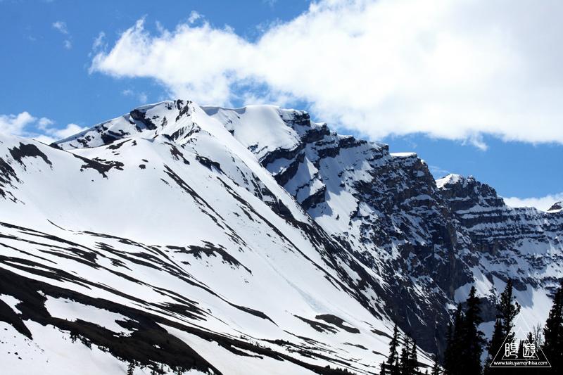 065 Columbia Icefield ~氷河の上を歩く~_c0211532_11331978.jpg