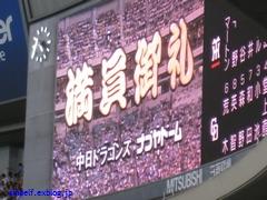 2010ペナントレース最終観戦・・・_c0134734_21341761.jpg