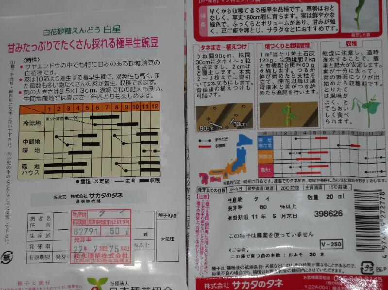 極早生豌豆3種_f0018078_16543430.jpg