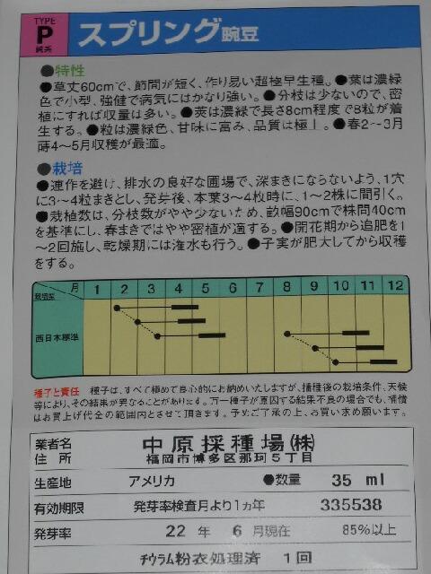 極早生豌豆3種_f0018078_1701267.jpg