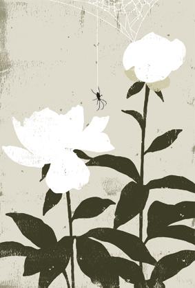 「芍薬と蜘蛛」_e0182479_1412025.jpg