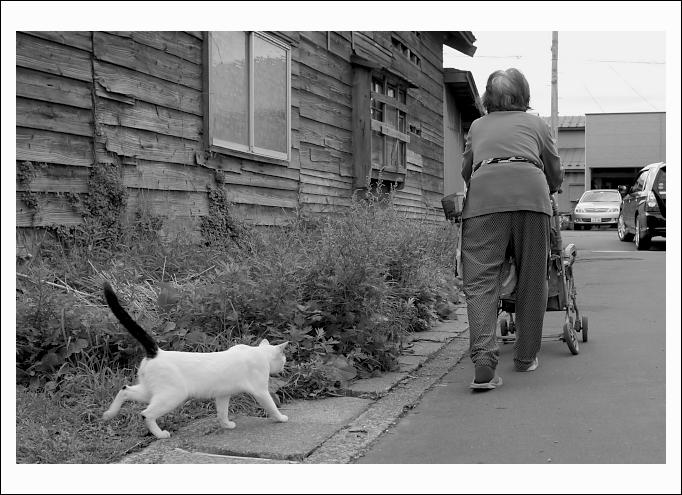 おばあさんと猫_c0170584_21121634.jpg