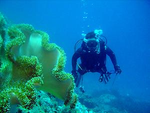 青い海♪ ラチャノイ島♥_f0144385_0353028.jpg