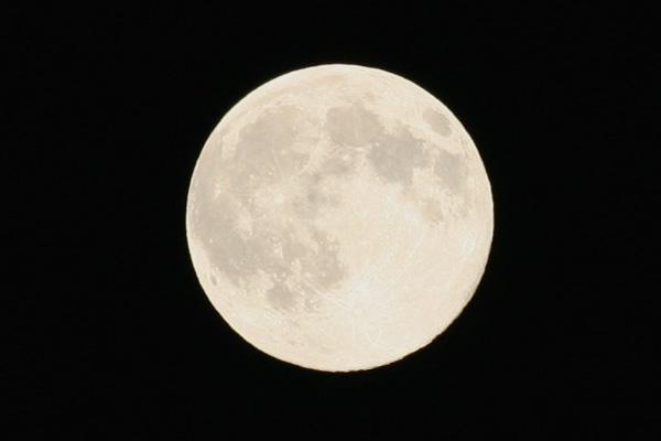 満月_f0146493_1250494.jpg