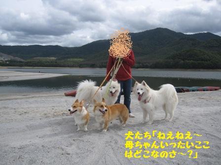 f0212597_1613217.jpg