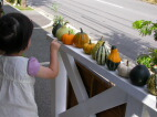 かぼちゃ売りの少女_c0102699_0241462.jpg