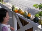かぼちゃ売りの少女_c0102699_024256.jpg