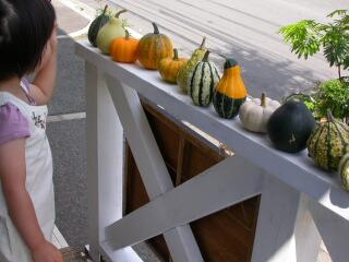 かぼちゃ売りの少女_c0102699_0261462.jpg