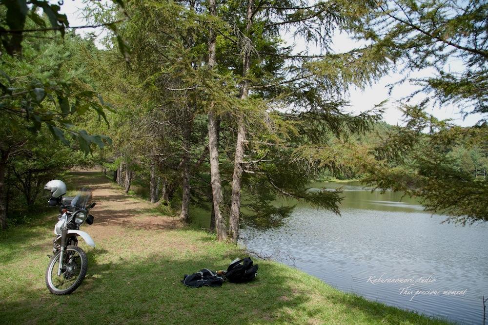 小さな湖畔_c0137403_17532878.jpg